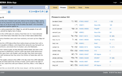 Phrase and Syntax Search for the Layperson